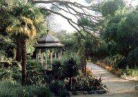 Никитский ботанический сад одно из красивейших мест окрестностей Ялты
