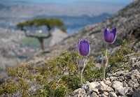 Первые лучики весеннего солнца: погода в марте в Крыму