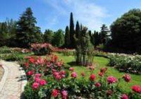 Никитский ботанический сад — одно из красивейших мест окрестностей Ялты