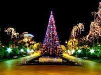 Погода в Сочи в декабре: отдых с удовольствием!
