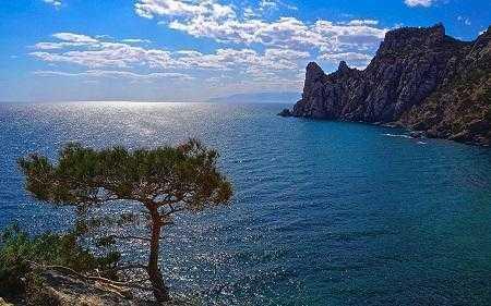 Крым в 2018 году посетило рекордное число туристов
