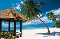 Климат в субтропиках — погода в Доминикане по месяцам