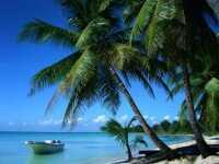 Отели Доминиканы 4 и 5 звезд, все включено: для тусовщиков и ценителей покоя