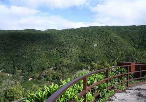 Природный парк Анага в Тенерифе - фото, экскурсии