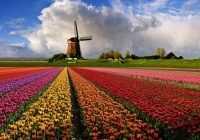 Достопримечательности Королевства Нидерланды