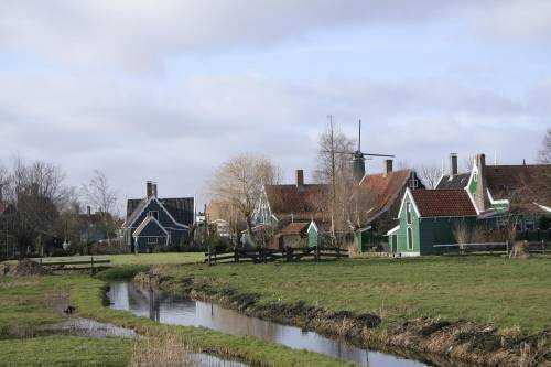 Сквозь цветочные поля Нидерландов на велосипеде