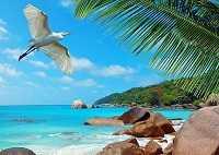 Летим на Сейшельские острова: название и описание аэропортов прилета