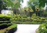 Гурзуфский парк — ландшафтный символ Гурзуфа