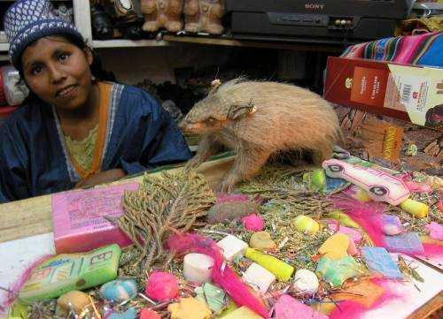 Ла-Паса - рынок Ведьм в Боливии