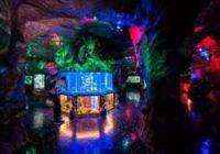 Евпаторийский аквариум: изучаем обитателей морских глубин