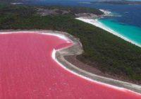 Австралийское озеро розового цвета