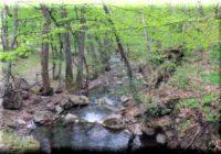 Альма самая легендарная река в Крыму